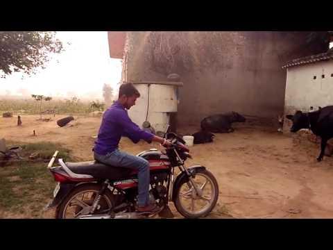 Desi raoshahb video best