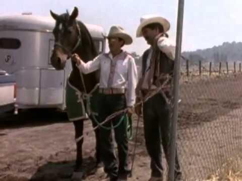 El Vaquero y La Dueña 1998 Pelicula