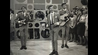Bee Gees - All Of My Life (1966)
