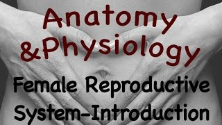 Female Reproductive System : Introduction To The Female Reproductive System (20:01)