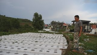 Vietnam's FETUS & BABY CEMETERY. 19,000 Abortions in Pleiku