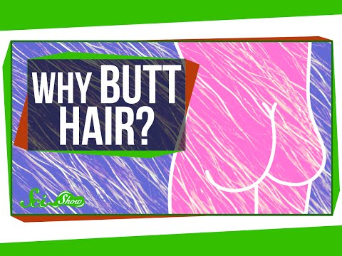 Why Do We Have Butt Hair
