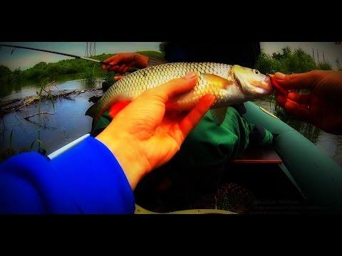 видео ловля щуки на хопре