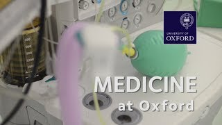 Medicine at Oxford University
