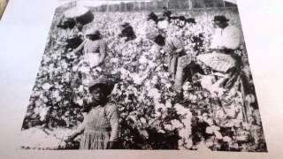 Slave Project: Field Work