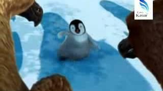 Punjabi Totay Penguin Majoon2