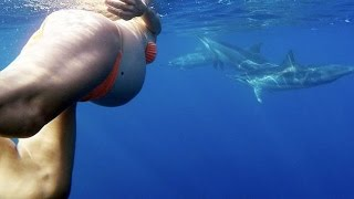 Pregnant Woman Wants To Give Birth In The Ocean With The Help Of Dolphins