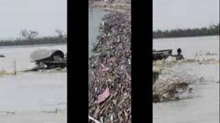 Myanmar Nargis Cyclone Photo Video