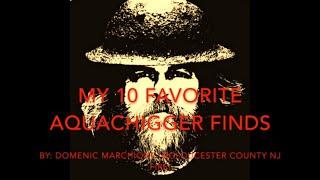 My Ten Favorite Finds Of Aquachigger