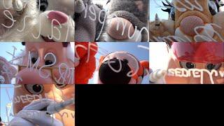 【レンズにサイン】マリー、トンバニ、スミー、ティガー、ディーダム(エントランス 2016.2.27 TDL)