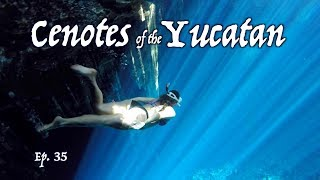 Cenotes on The Yucatan Peninsula OVERLAND TRAVEL SAGA Ep. 35