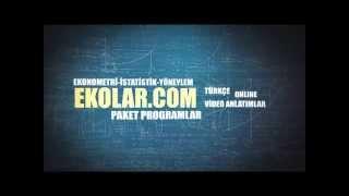 Ekonometri Paket Programlar