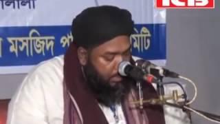Bangla waz 2017 @ ঈমানের শক্তি Maulana Hasan Reza Qaderi   YouTube