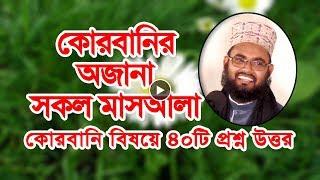 ৪০+ প্রশ্ন উত্তর কোরবানির মাসআলা Bangla Waz Mahfil Mamun Hussine Habibi New Mahfil
