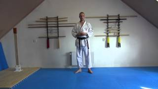 Characteristic of Wado kicking techniques