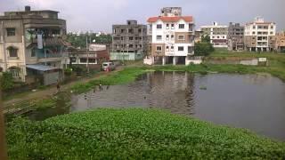 Desi Pool Game ( Kolkata lifestyle).