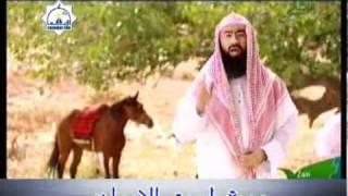 فضل مجالس الذكر - فضل العمرة والحج - فضل العدل بين الناس