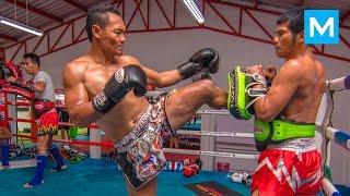 Saenchai Muay Thai Training | Muscle Madness