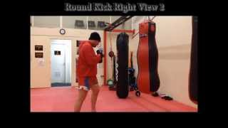 Muay Thai Bag Workout (Basic)