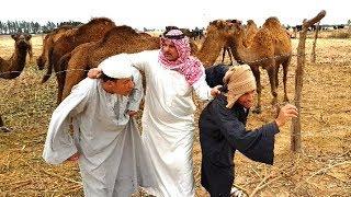 شاهد ماذا فعل الكفيل السعودي في شخلول وزموط / شيء غير متوقع / اضحك من قلبك 😂😂