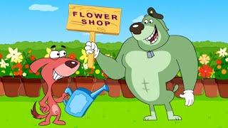 Rat-A-Tat|