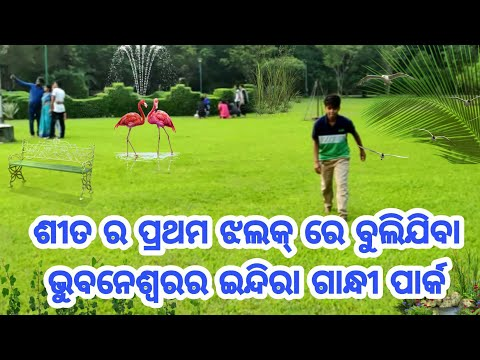 Xxx Mp4 A Look Towards To The Indira Gandhi Park Bhubaneswar 3gp Sex