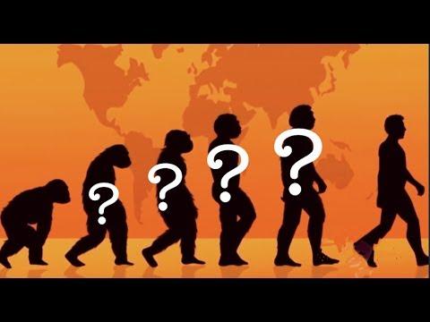 Die Große Evolutions-Lüge!