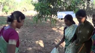 Indian Mature Ladies