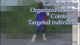 集団ストーキング被害者の記録 2017.6.10  Gang Stalkng Organized stalking Cointelpro Targeted Individuals