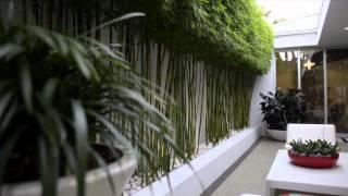 Australia's Best Gardens