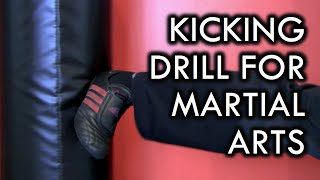 Kicking Drill for Martial Arts and Fighting