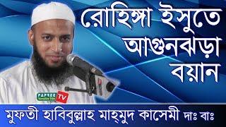 Bangla Waz 2017 Mufti Habibullah Mahmud Kasemi