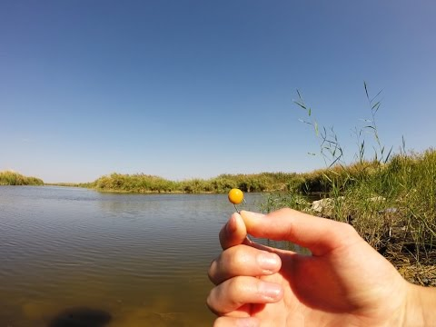 рыбалка на фидер варим горох