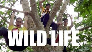WILD LIFE - Jack & Jack Dance Choreography | Luke Walker NeWest