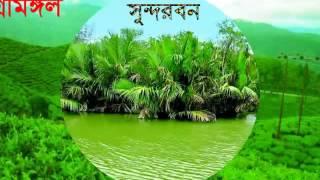 TOP Beautiful Place of Bangladesh দেশের সেরা মনোরম দৃশ্যের ভিডিও দেখুন