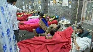 الهند: أرز بالطماطم في معبد هندوسي يقتل 11 شخصا ويصيب 90 آخرين وحديث عن .. مبيد حشري!…