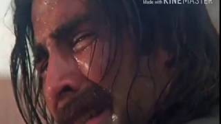 Janwar movie dehk k mujko dil ko mere chain aata h status video