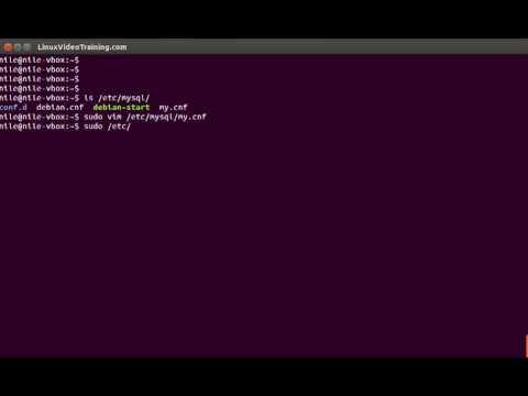 4 MySQL Video Tutorial MY CNF