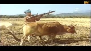 FULL BODO FILM   BASIRAM JWHWLAO (बासिराम जोहोलाव)