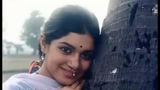 best of habib and nancy bangla song -tomare dekhilo