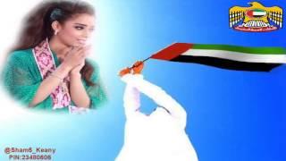 uae 41 songs bd sarwar