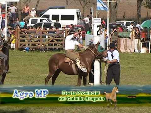 Jineteada Fiesta Provincial del Caballo en Bragado primera parte