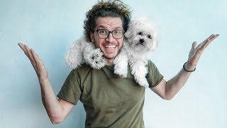 تجربة تربية الكلاب و مقاطع مضحكة (هل الكلب نباتي؟)