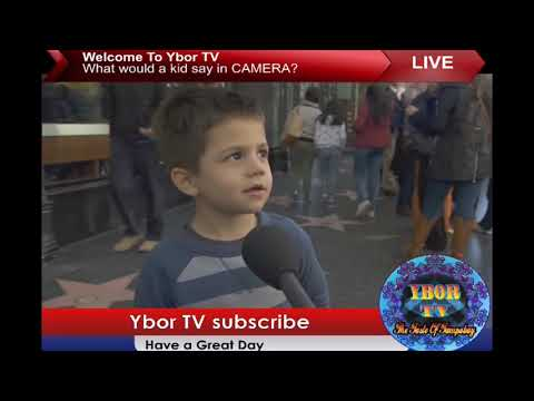 Xxx Mp4 What Would Kids Say Infront Of A CAMERA 3gp Sex