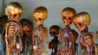 Thousand of Fairy and Giant Graves Discovered in America- Guests Gary Wayne- Chad Riley- Now You ...