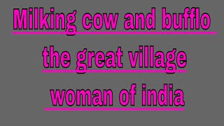 Milking cow and bufflo the great village woman of india.         My Edited Video
