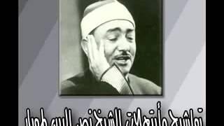 بك أستجير الشيخ نصر الدين طوبار
