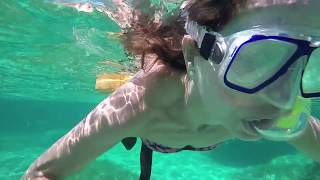 Jibacoa Cuba 2017 Snorkeling Coral Reef