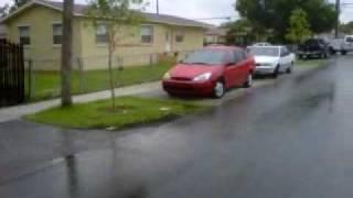 1 yr after rain.3GP