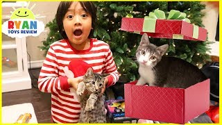 Surprise Ryan with Two Cats for Christmas!
